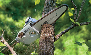 CroppedImage350210-Homeowner-Pole-Pruners.png