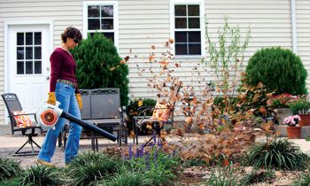 CroppedImage350210-Stihl-HomeOwner-Blowers-2019.jpg